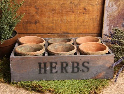 Herb Tray Pots Planter {Amazon.com}