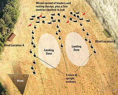 Diagram For Setting Up For Pressured Geese The Hunt