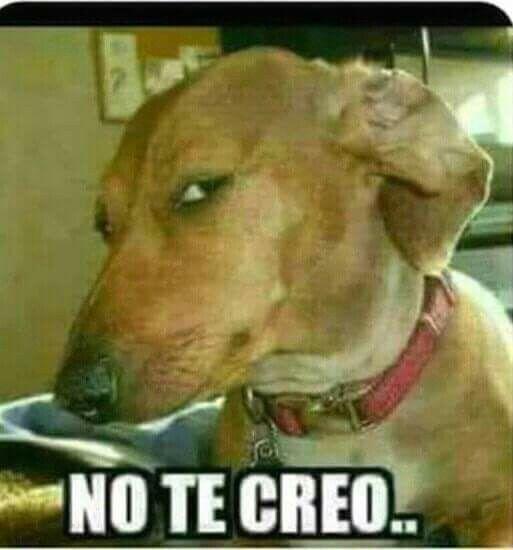 Pin De Liliana Hurtado Navarro En Memes Y Chistoretes Memes Sarcasticos Memes Divertidos Memes Mexicanos Divertidos