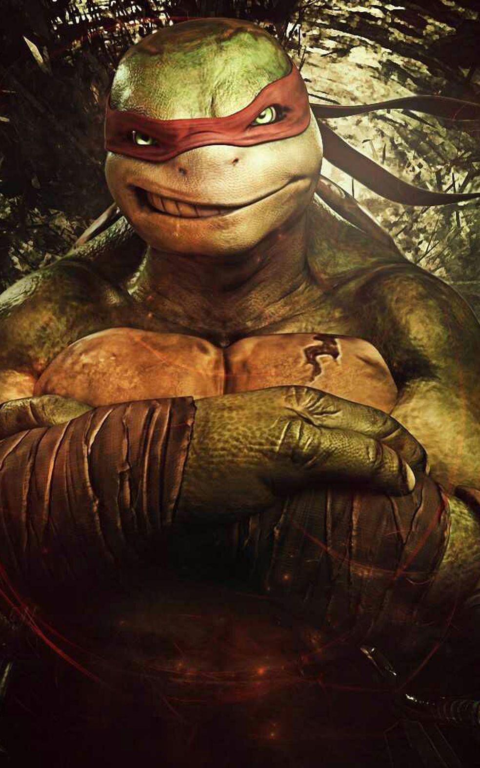 Teenage Mutant Ninja Turtles Tmnt Ninja Turtle