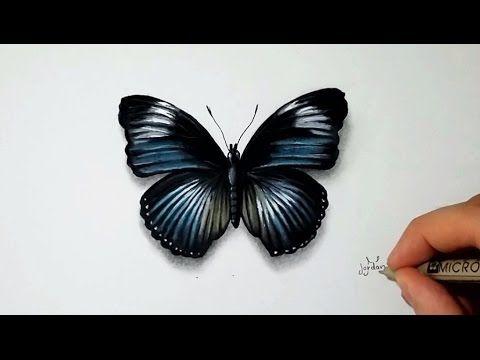 Comment dessiner un papillon tutoriel 2 youtube enfants pinterest - Dessine un papillon ...