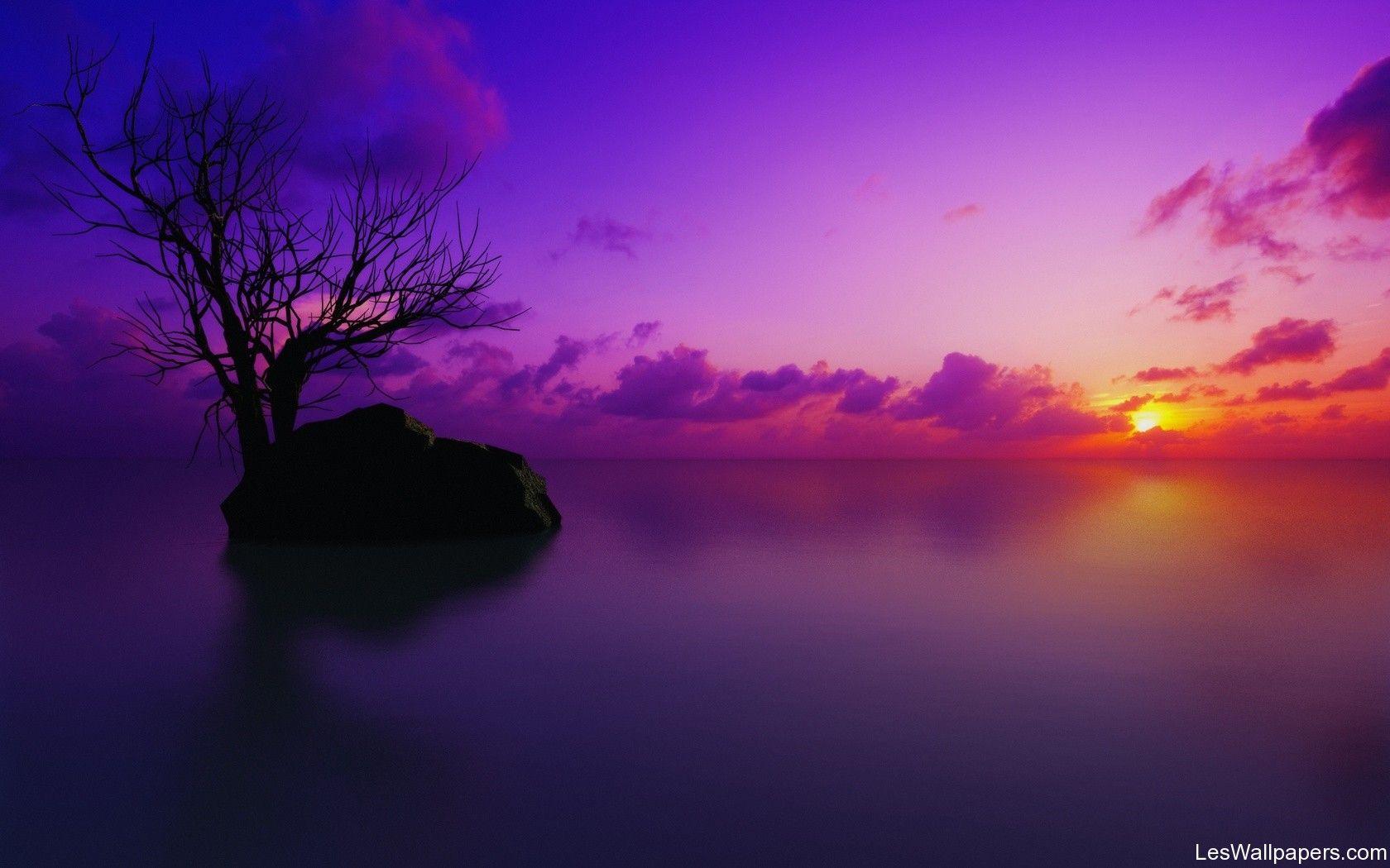 Beaches At Night Purple Fond Ecran Paysage Et Nature Hd Histoires De Couleurs Paysage Belle Photo