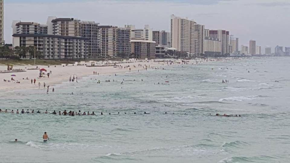 Amazing Human Chain Formed To Rescue Drowning Family In Pcb Panama City Panama Panama City Beach Florida Beaches