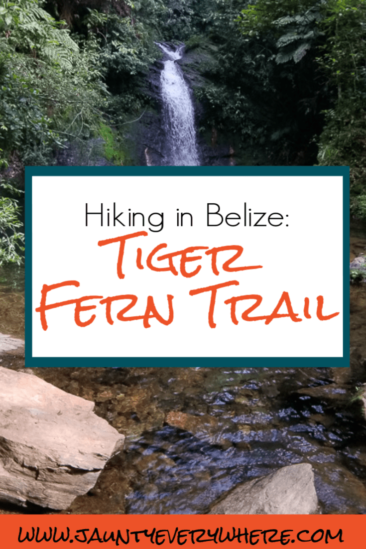 Tiger Fern Trail, Cockscomb Basin, Belize