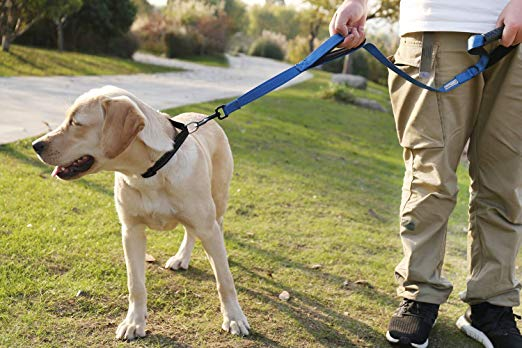 Vivaglory Dog Leash Padded Handle Heavy Duty Reflective Traffic Leashes For Control Safety Dog Leash Dogs Pet Leash