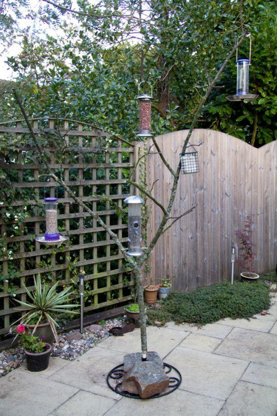 Make Your Own Tree Bird Feeder Backyard Birds Sanctuary Bird Feeder Stands Bird Feeder Station