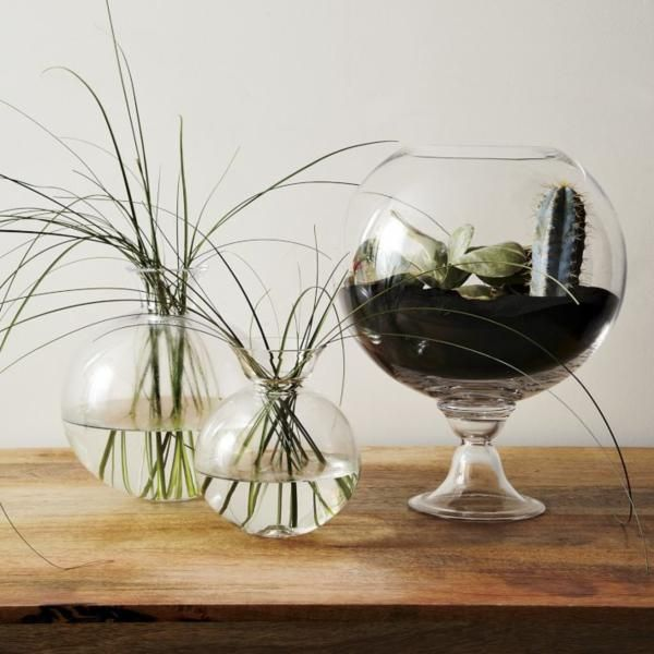 What To Put In A Glass Bowl For Decoration Decorating With Houseplants  Houseplants And Centerpieces