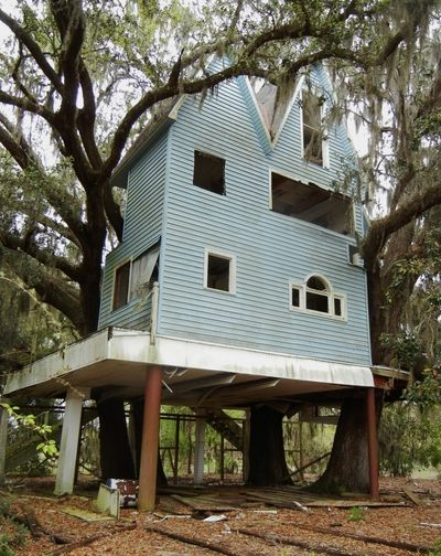 Abandoned Victorian Tree House Brooksville Florida Rear View