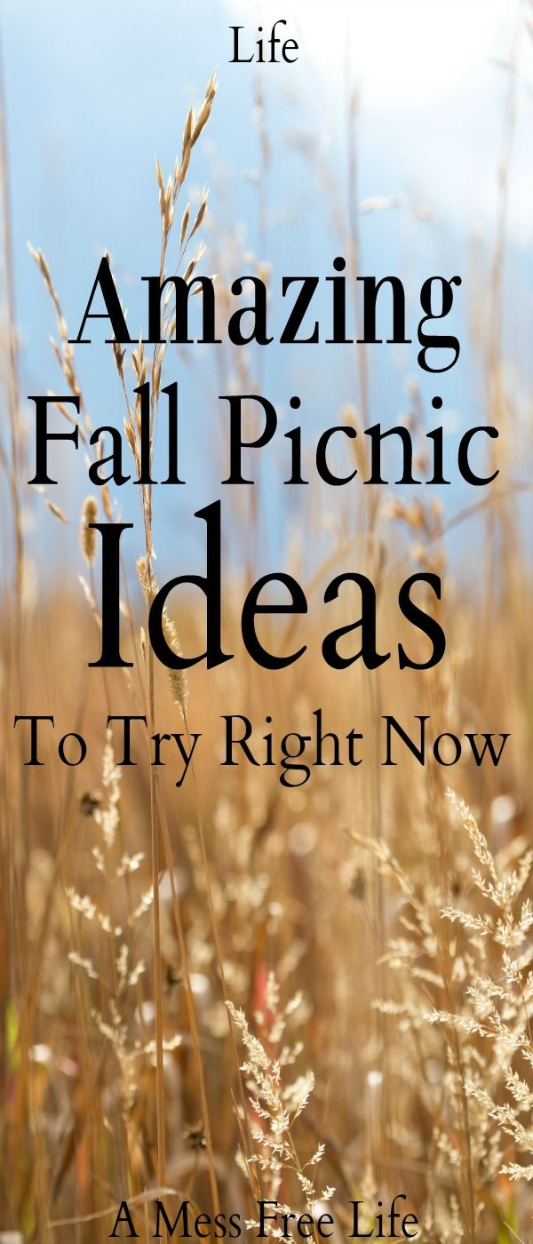 Amazing Fall Picnic Ideas To Try Right Now #familypicnicfoods
