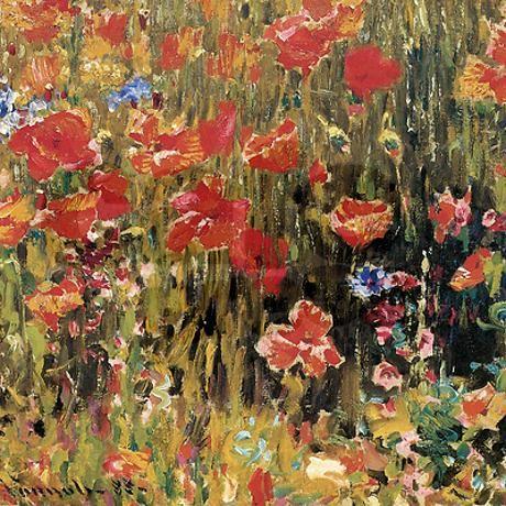Robert Vonnoh Poppies Shower Curtain | magic eye | Pinterest | Room