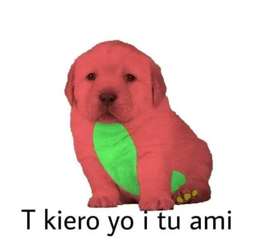 Perrito Meme Busqueda De Google Memes Memes Perros Memes Divertidos
