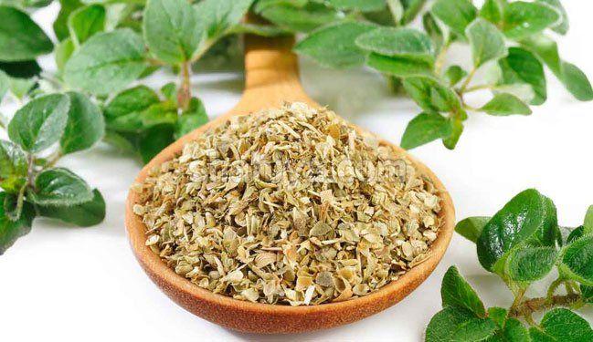 ما هي فوائد البردقوش للنساء مدونة شهية Health And Nutrition Cooking With Turmeric Healing Herbs