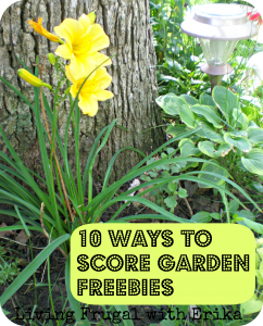 10 Ways to Score Garden Freebies - Living Frugal With Erika
