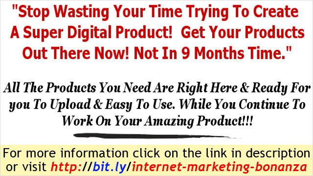 Internet Marketing Beginner - 42 Internet Marketing PLR Products   internet marketing seo