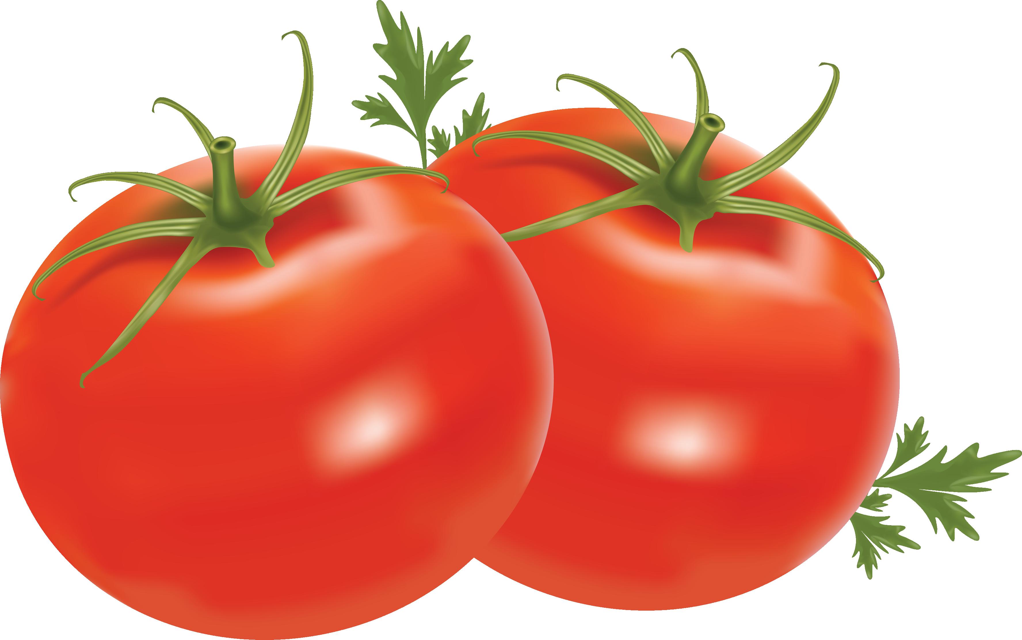Red Tomatoes Png Image Red Tomato Tomato Tomato Benefits