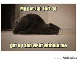 Afbeeldingsresultaat Voor When You Re So Tired Meme Grappige Teksten Grappig Katten