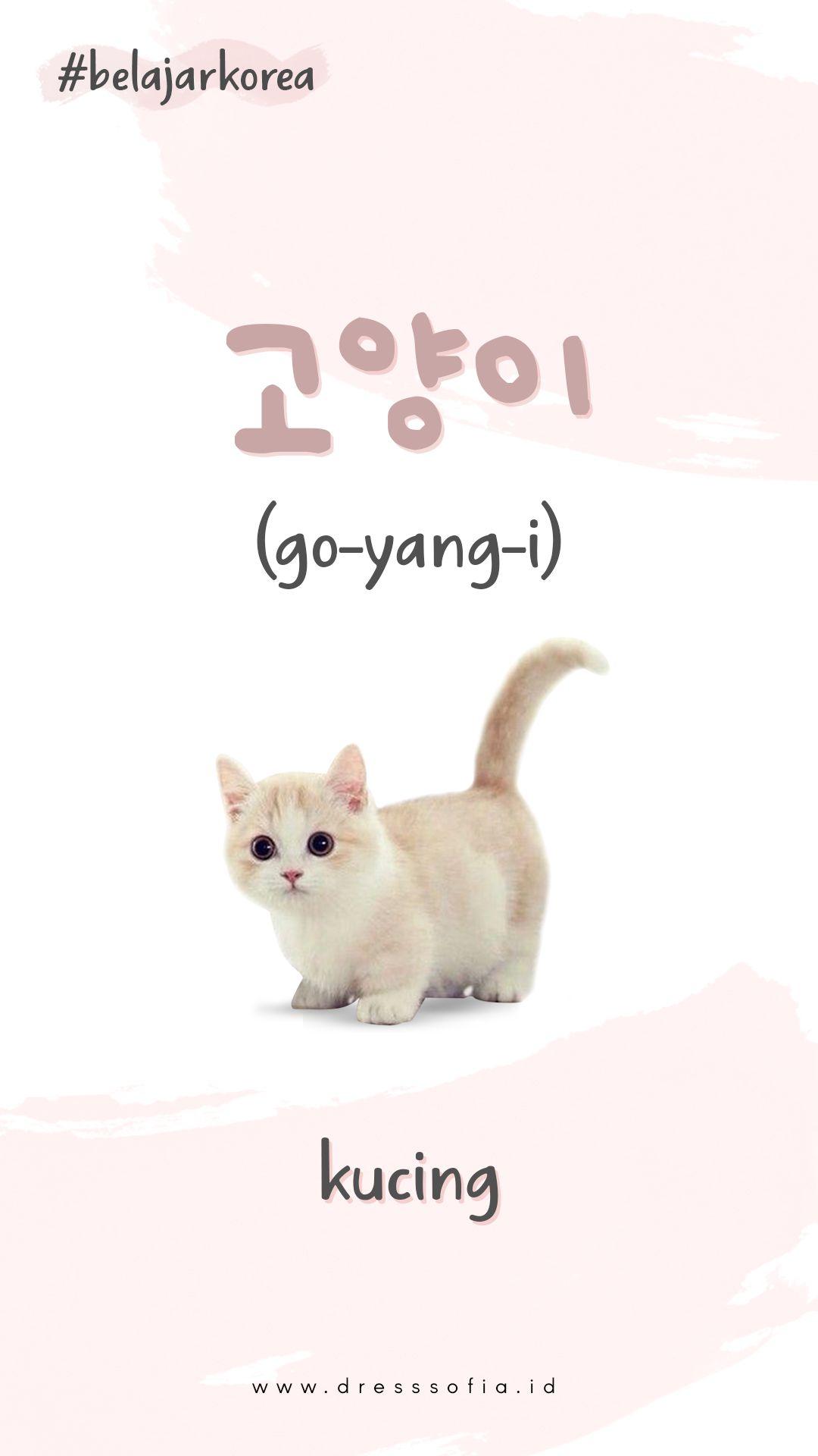 Korean Lesson Di 2020 Bahasa Korea