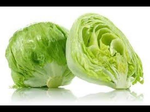 Dos Maneras Para Conservar La Lechuga Lista Para Consumir Al Momento Youtube Verduras Congeladas Como Conservar La Lechuga Conservar Lechuga