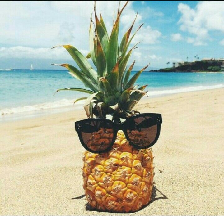 Image result for pineapple with sunglasses