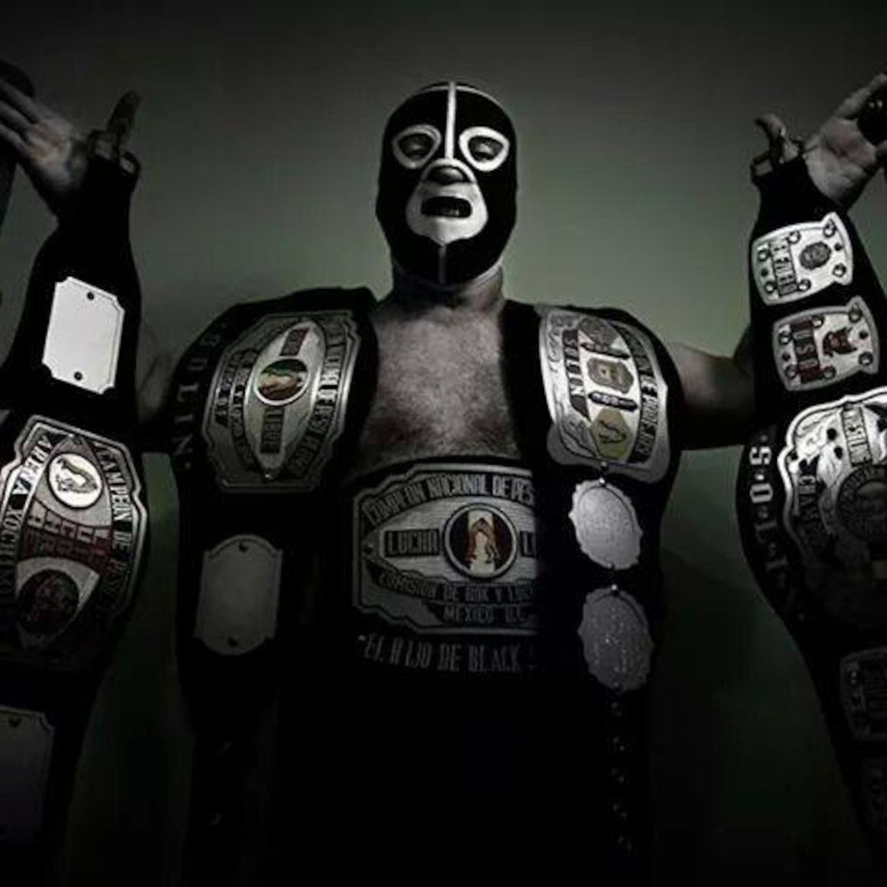 a study of professional wrestling So you are probably an avid fan of professional wrestling you probably have  every kind of poster featuring your favorite wrestler, the t-shirts,.