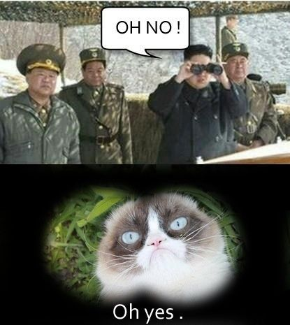 Fuckin Grumpy cat will mess your ass up!! Believe that son!