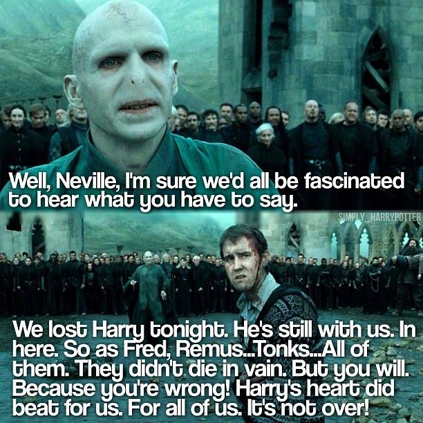 Lordvoldemort Nevillelongbottom Ralphfiennes Matthewlewis Harry Potter And The Deathly Hallows Part 2 Harr Matthew Lewis Neville Longbottom Ralph Fiennes