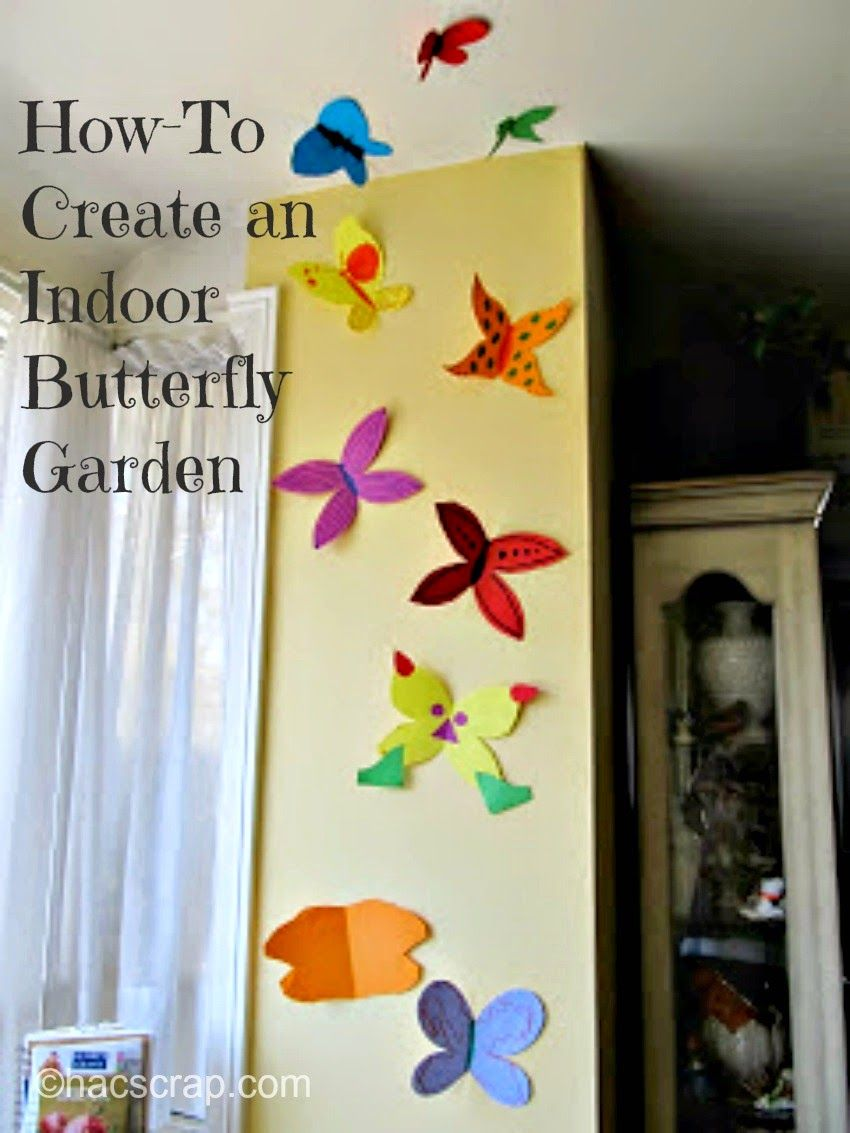How-To: Make Your Own Butterfly Garden