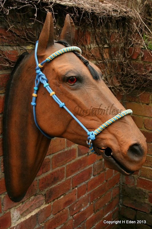 Side Pull Bitless Bridle Horse Halters Horses