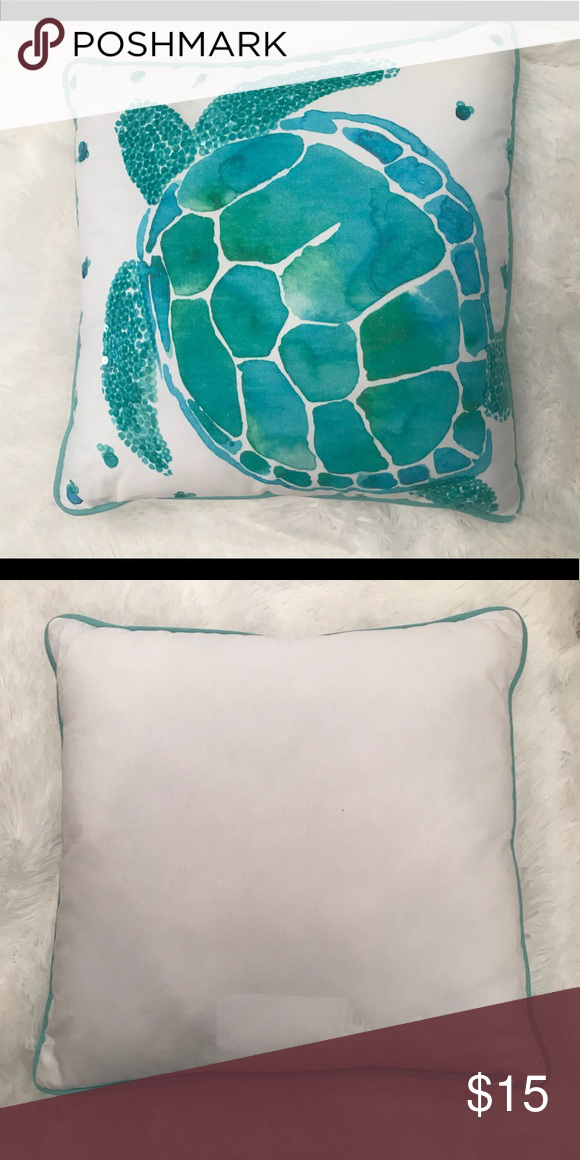 Pottery Barn Pillow Inserts Enchanting Pottery Barn Teen Sea Turtle Pillow  Pillow Inserts Turtle And Sequins Review