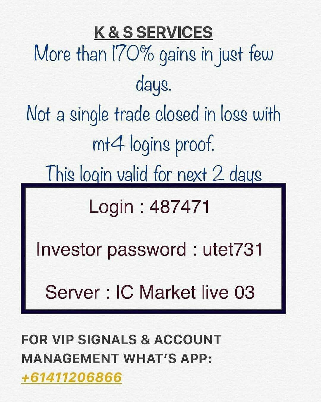 For Account Management And Signals Just Whatsapp On 61411206866