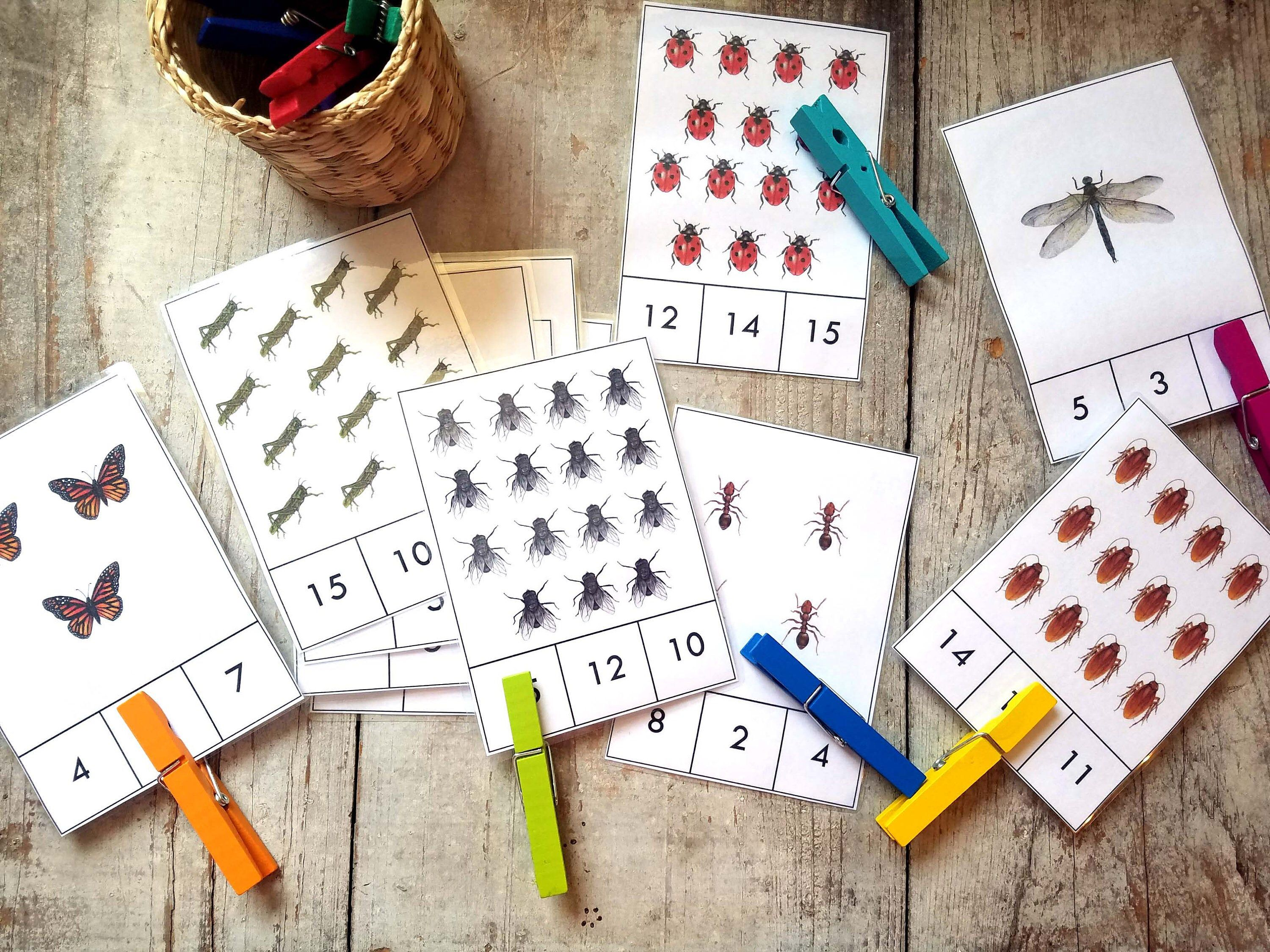 Insect Count And Clip Cards 1 15 Printable Digital