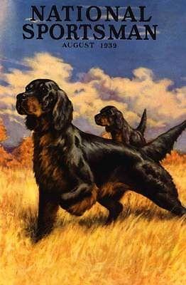 B 1939 Sporting Field Dogs Upland Game Bird Hunting Poster Gordon Setter | eBay