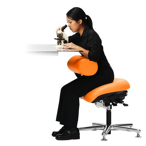 Ergonomic Chair For Lab And Technical Environments Looks