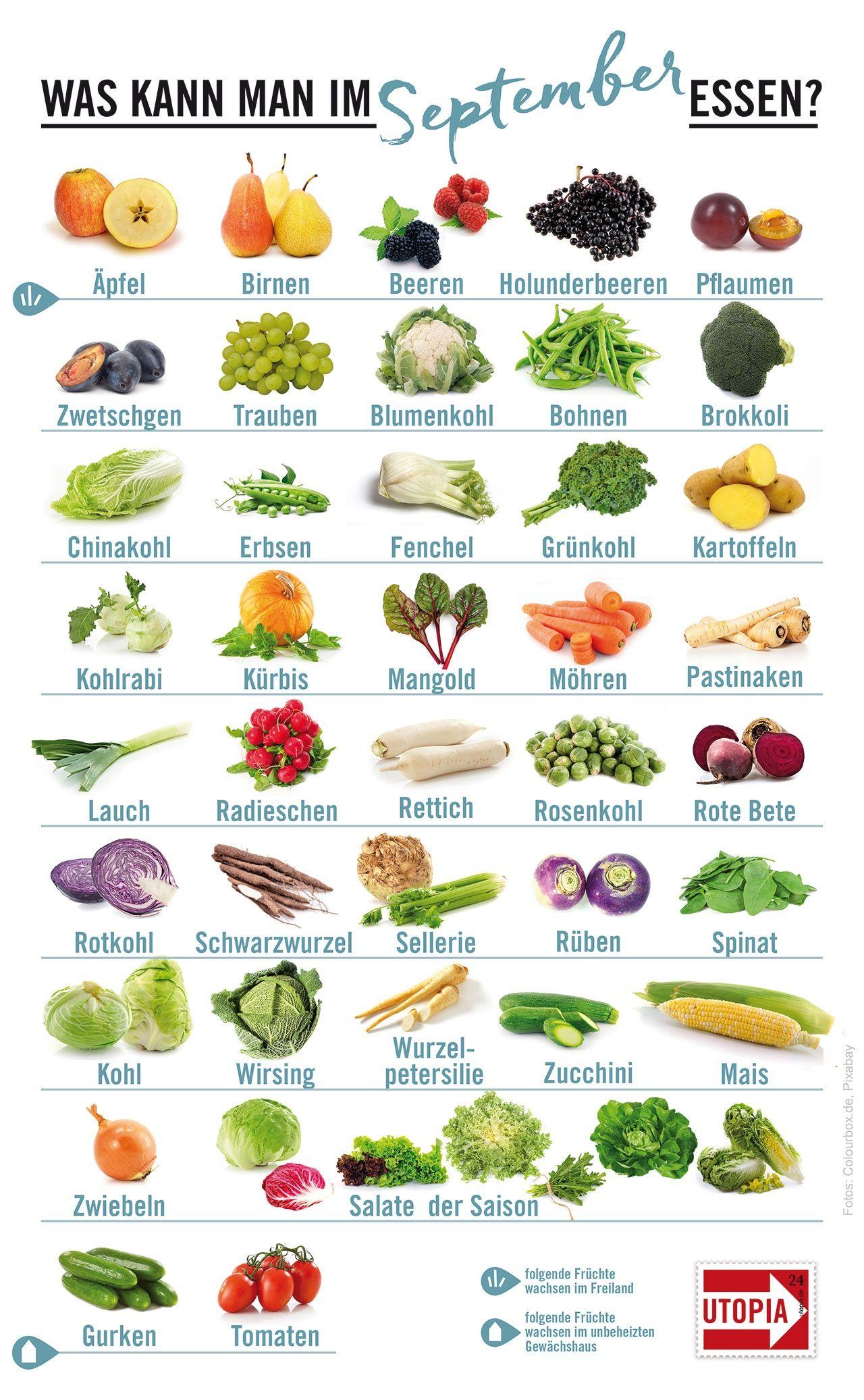 Saisonkalender: Das gibt's im September | Flat Belly meals ...