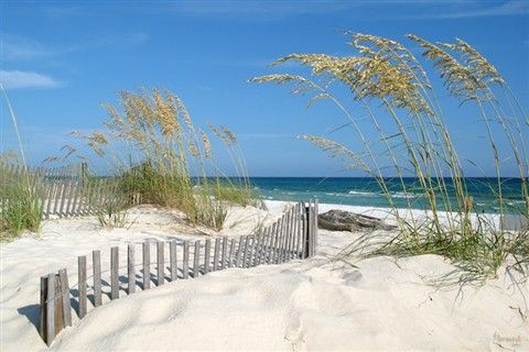 Beach Scene Fort Walton Fl