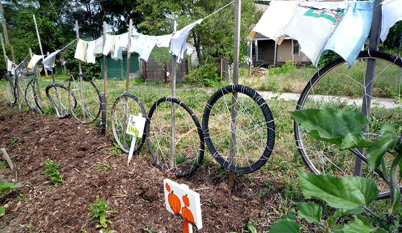 Building a great trellis may mean looking no farther than