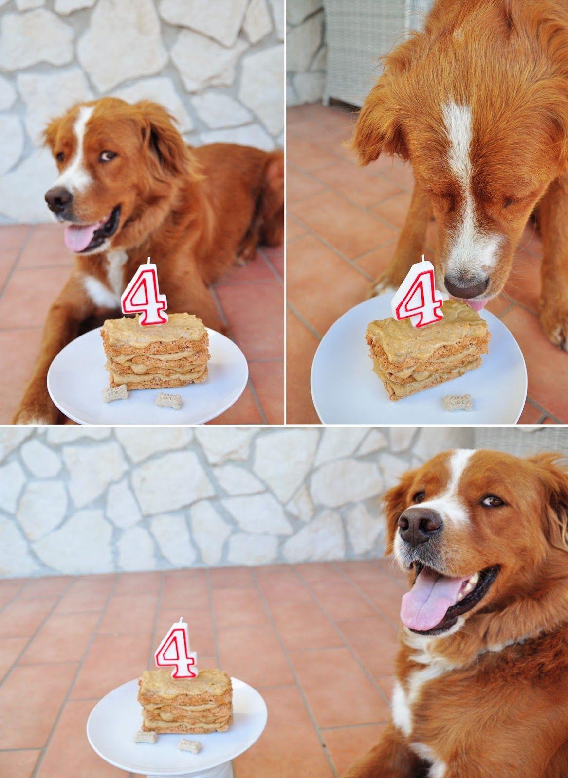 Knox S 4th Birthday Dog Cake Recipe Dog Cake Recipes Dog Cake