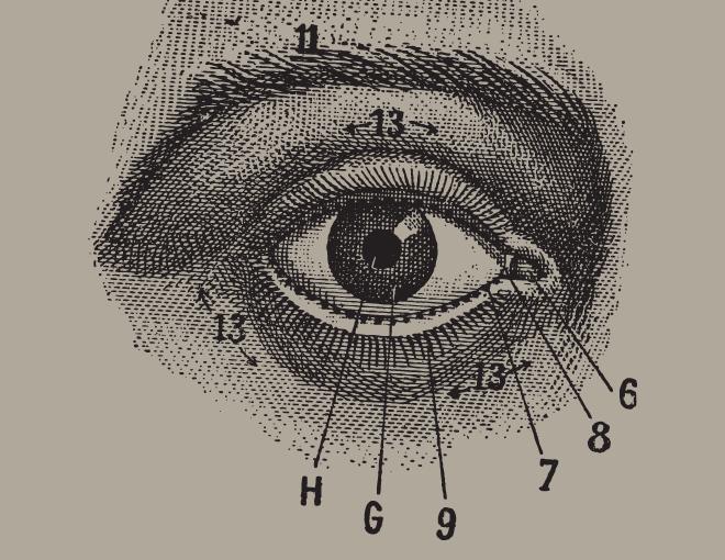 Human Eye Anatomy Parts Of The Eye Explained Draw Eyes
