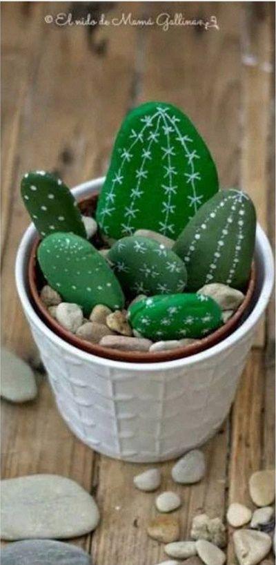 Piedras de cactus