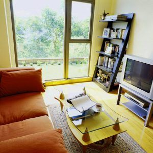 Ideas For Decorating A Very Small Living Room  Httpjanekennedy Simple Small Living Rooms Design Review
