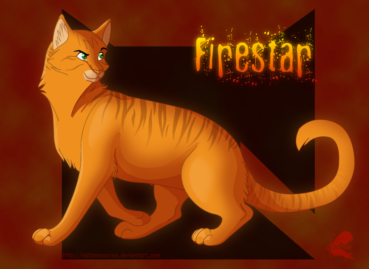 Warriors Firestar By Natamesecrea Deviantart Com On Deviantart