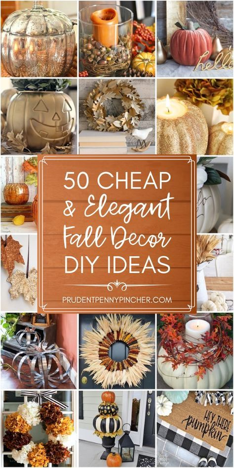 26+ Where to buy fall decor cheap info