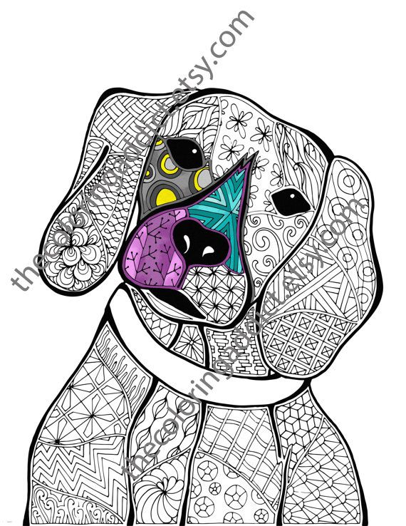 Zentangle Dog Colouring Page Animal By TheColoringAddict