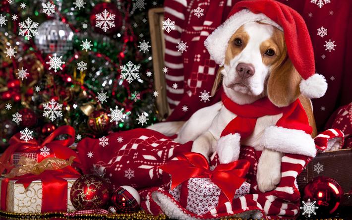 t l charger fonds d 39 cran 4k bonne et heureuse ann e 2018 beagle ann e de chien de no l 2018. Black Bedroom Furniture Sets. Home Design Ideas