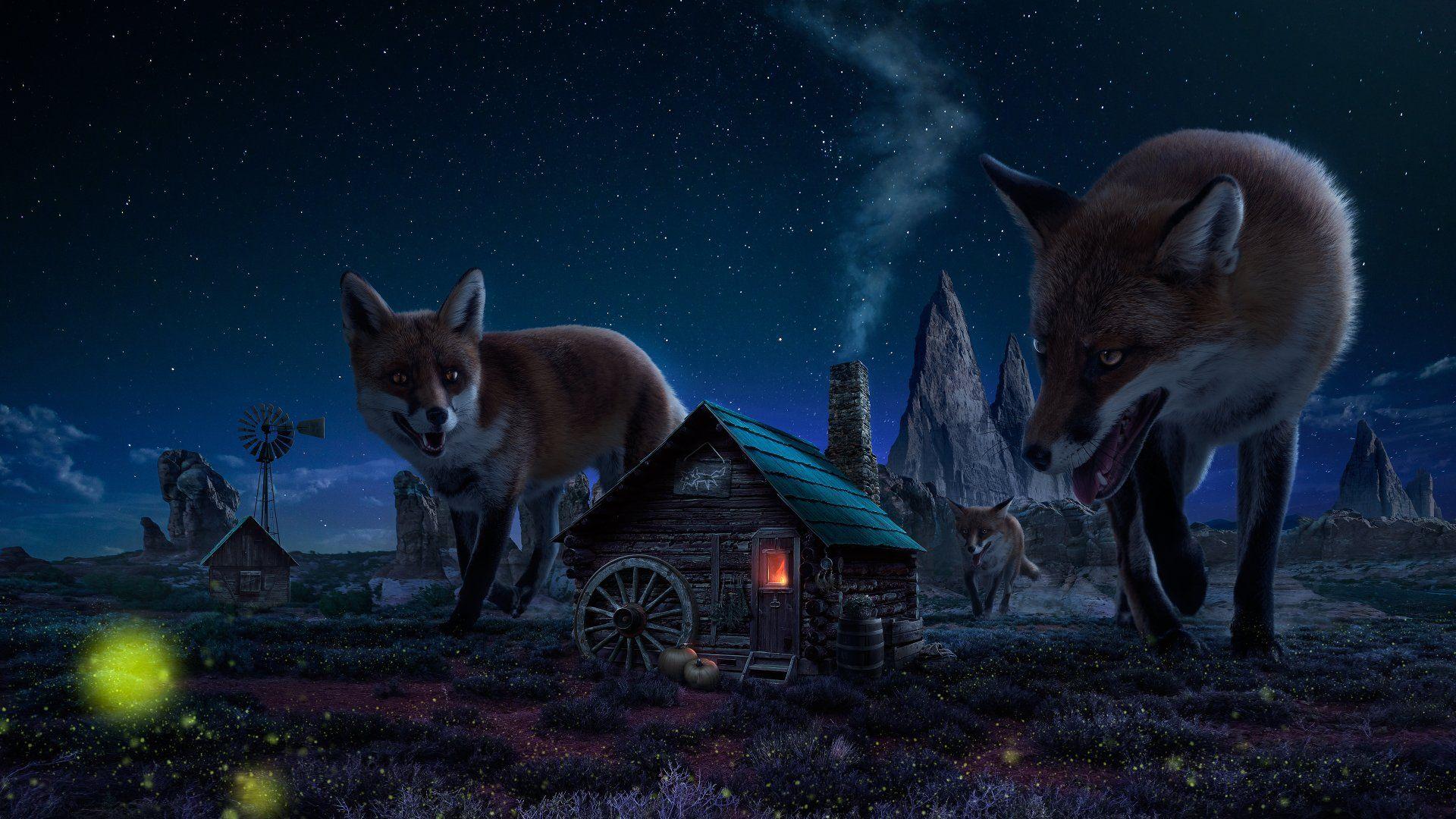Fantasy Animal  Fox Night Wallpaper