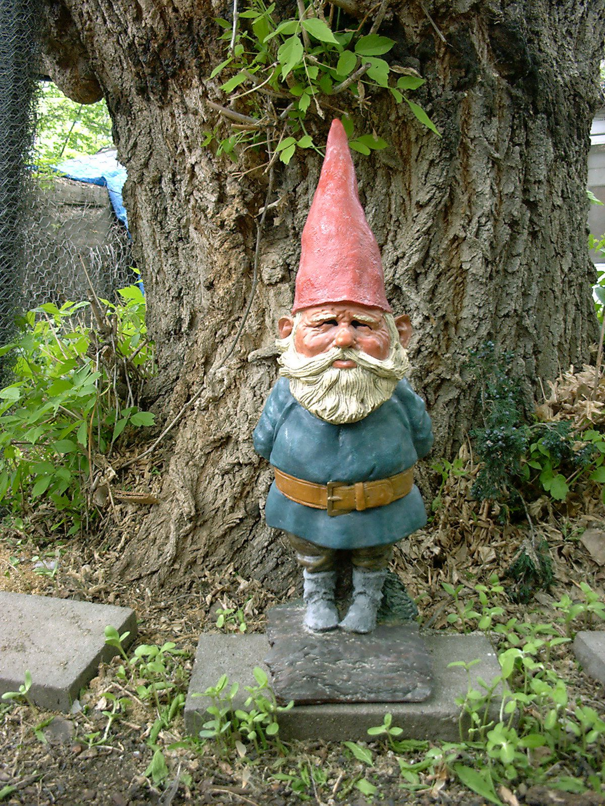 Gnome In Garden: Pin On Garden Gnomes