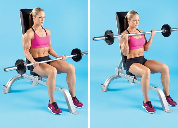 Seated Barbell Curl Bicep And Tricep Workout Bench Workout Best Cardio Workout