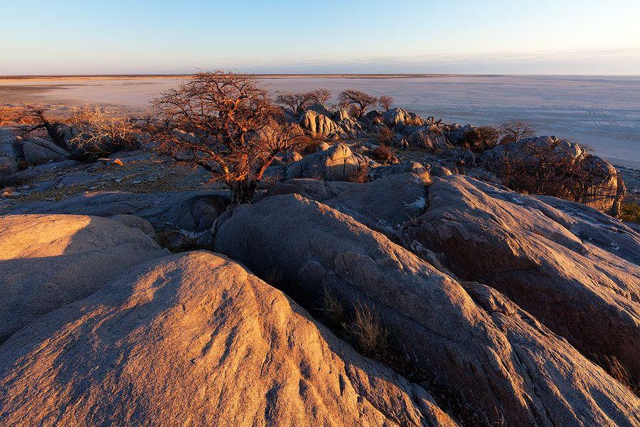 After the Night. Kubu Island, Makgadikgadi Pans, Botswana. First light of day casts welcome heat on the rocks of Kubu Island after an icy autumn night