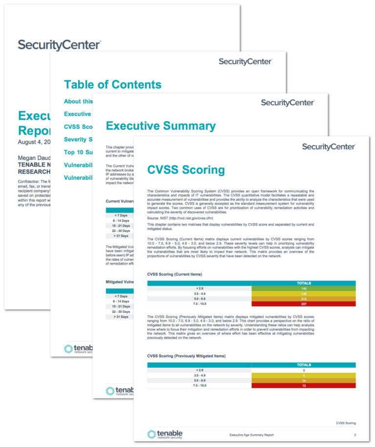 Executive Age Summary Report Sc Report Template