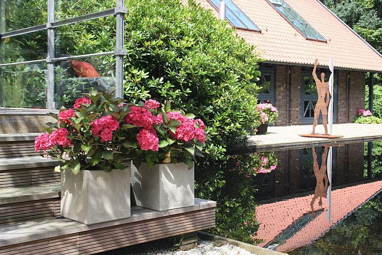 pflanzkübel quadratisch aus beton auf einer treppe am teich, Hause und garten